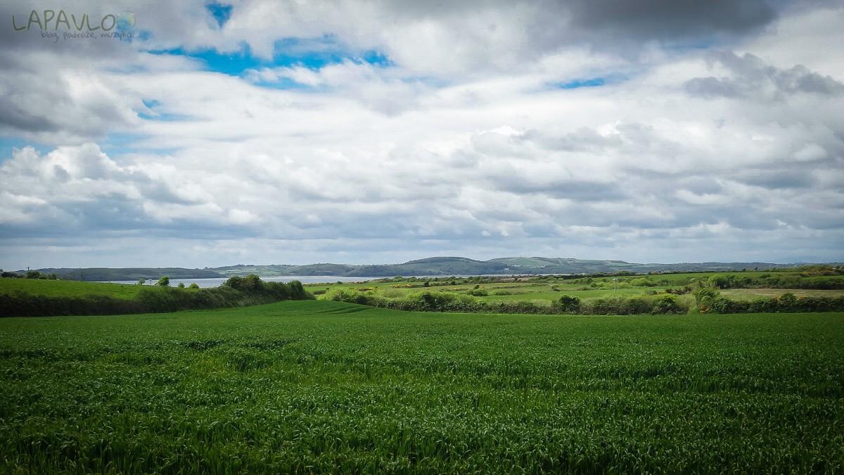 Widok na Dunmore East
